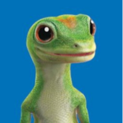thegeicogecko